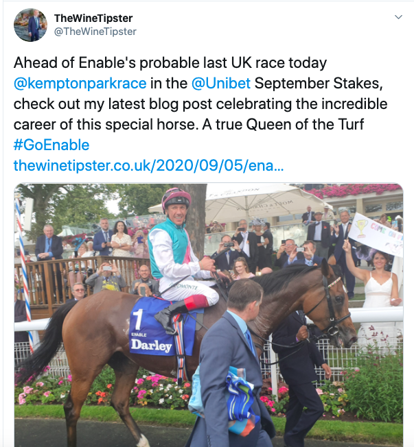 enable blog